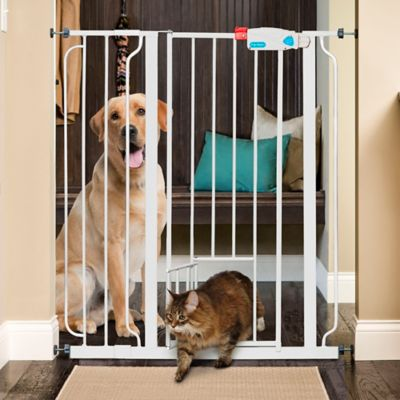 Extra-Tall Walk-Through Pet Gates with Small Door