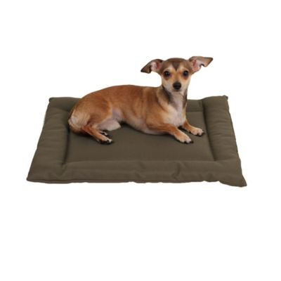Brutus Tuff Napper Dog Mat
