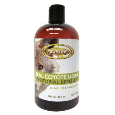 Coyote Urine Territorial Repellent