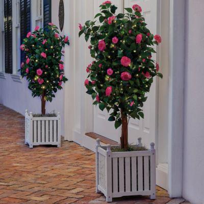 "Pre-Lit Camellia Topiary-48"""