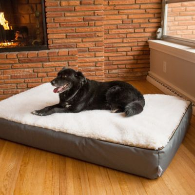 Super Orthopedic Lounge Dog Bed with Cream Sherpa