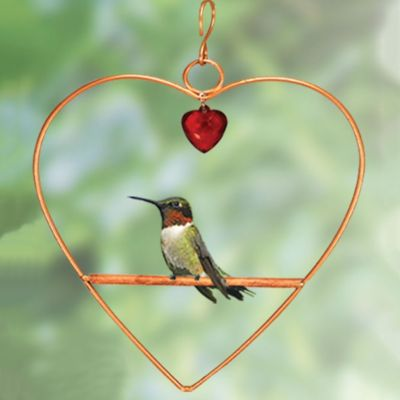 Heart Shaped Bird Swing