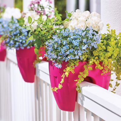 "12"" Railing Planter-Set of 2"