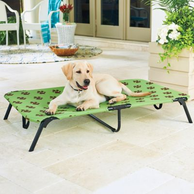 Folding Indoor/Outdoor Dog Bed