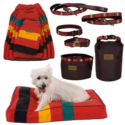 Mt. Rainier National Park Dog Coat