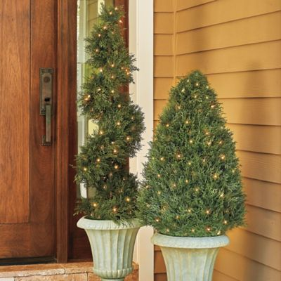 "Wilson & Fisher® 35"" LED Lighted Topiary Tree at Big Lots. 