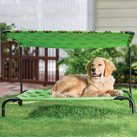 indoor outdoor dog bed improvements catalog With outside dog bed