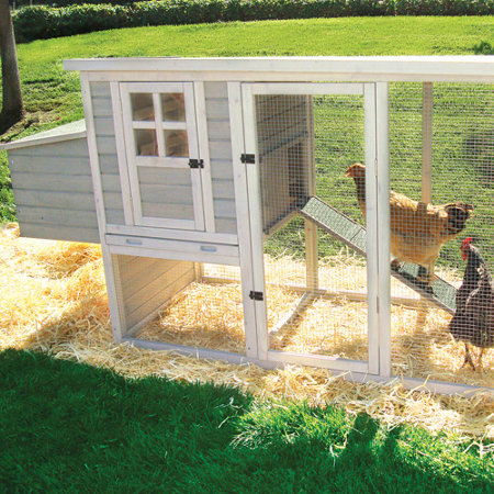 how to make a chicken coop easy under 20