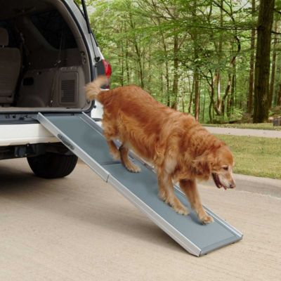 Telescoping Pet Ramp