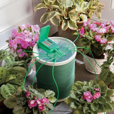 Automatic Plant Watering System with Coil Basket