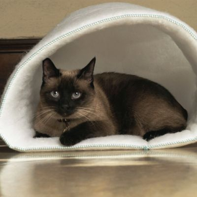Mysterious Kitty Kup Cat Bed