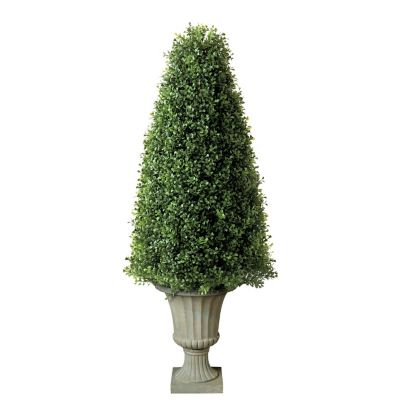 "36"" Boxwood Cone Topiary"
