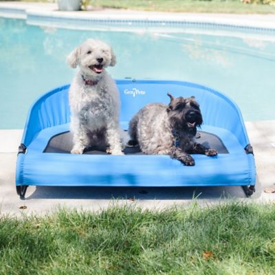 Cool-Air Cot Outdoor Dog Bed