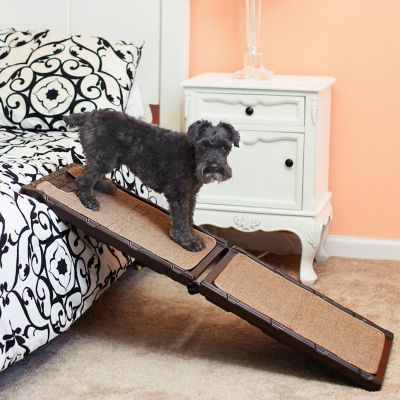 Indoor Carpet Dog Ramp