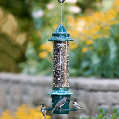 Squirrel Buster Plus Squirrel Proof Bird Feeder