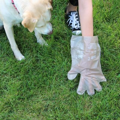 The Shmitt Pet Cleanup Glove-135 Count