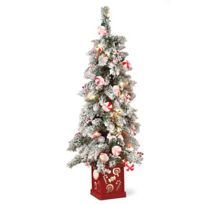 4' Peppermint Christmas Tree with Lighted Base |
