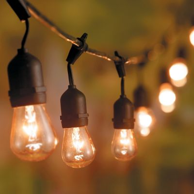 Clear Filament 24 Bulb String Lights-Edison