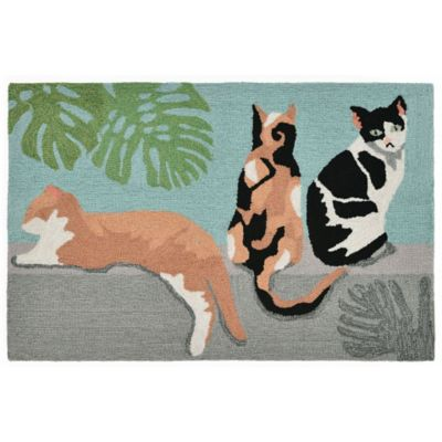 Catalina Island Outdoor Rugs