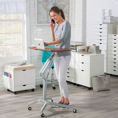 Sit and Stand Mobile Desk