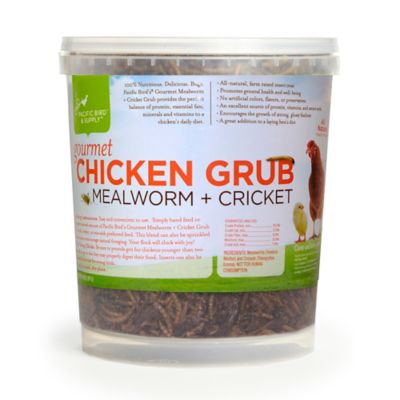 Gourmet Chicken Mealworm & Cricket Grub Buckets