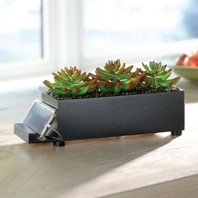 4-Port USB Charging Station Dock-Succulent
