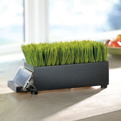 4-Port USB Charging Station Dock-Baby Grass