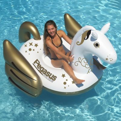 Giant Pegasus Pool Float