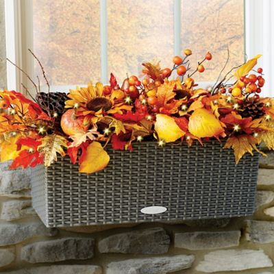 Autumn Harvest Window Box Filler