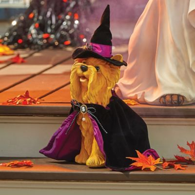 Halloween Dog-Wheaton Terrier