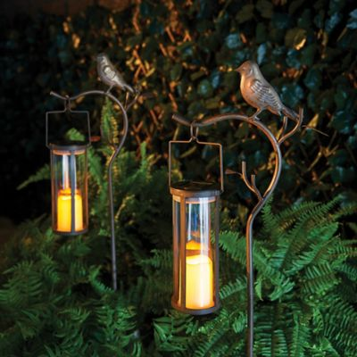 Aviary Solar LED Candle Lantern Path Light