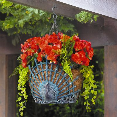 Peacock Metal Hanging Planter