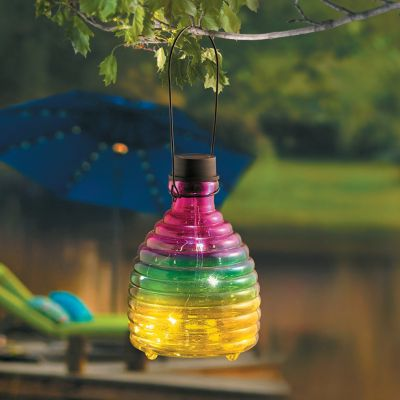 Lighted Glass Wasp Trap