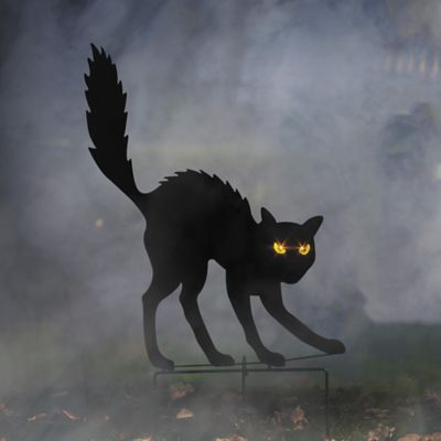 Black Cat Silhouette with Lighted Eyes Halloween Decoration