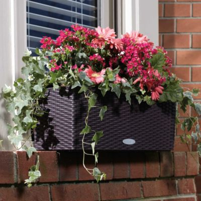 Self-Watering Rectangular Planter