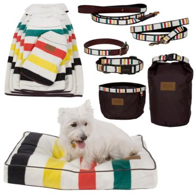 Glacier Park National Park Dog Accessories