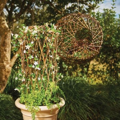 Willow Garden Plant Trellises