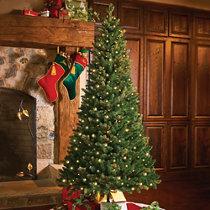 Pull Up Christmas Trees Improvements Catalog - Pull Up Christmas Trees