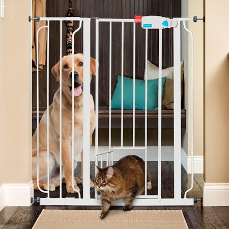 Extra Tall Walk Through Pet Gates With Small Door Improvements