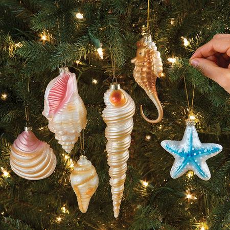 Seashell Christmas Ornaments-Set of 6 | Improvements