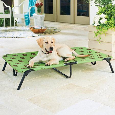 Indoor/Outdoor Dog Bed   Improvements Catalog
