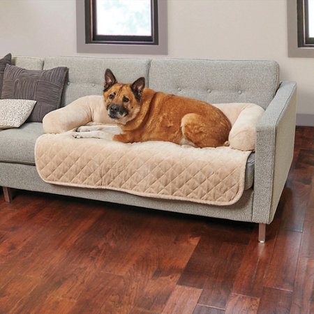 Pet Sofa Cover Deluxe Sofa Throw Pet Cover Thesofa