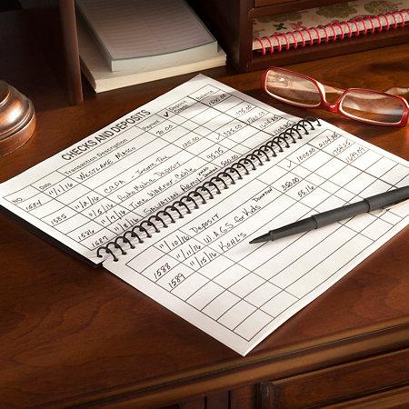 large print check register improvements