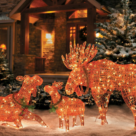lighted wireframe moose christmas decoration - Wire Frame Outdoor Christmas Decorations
